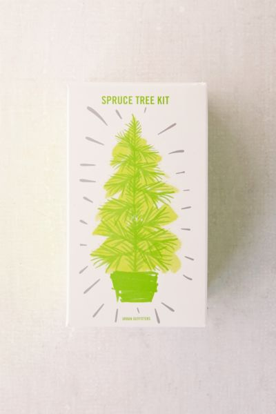 Grow Your Own Spruce Tree Kit - Green One Size at Urban Outfitters
