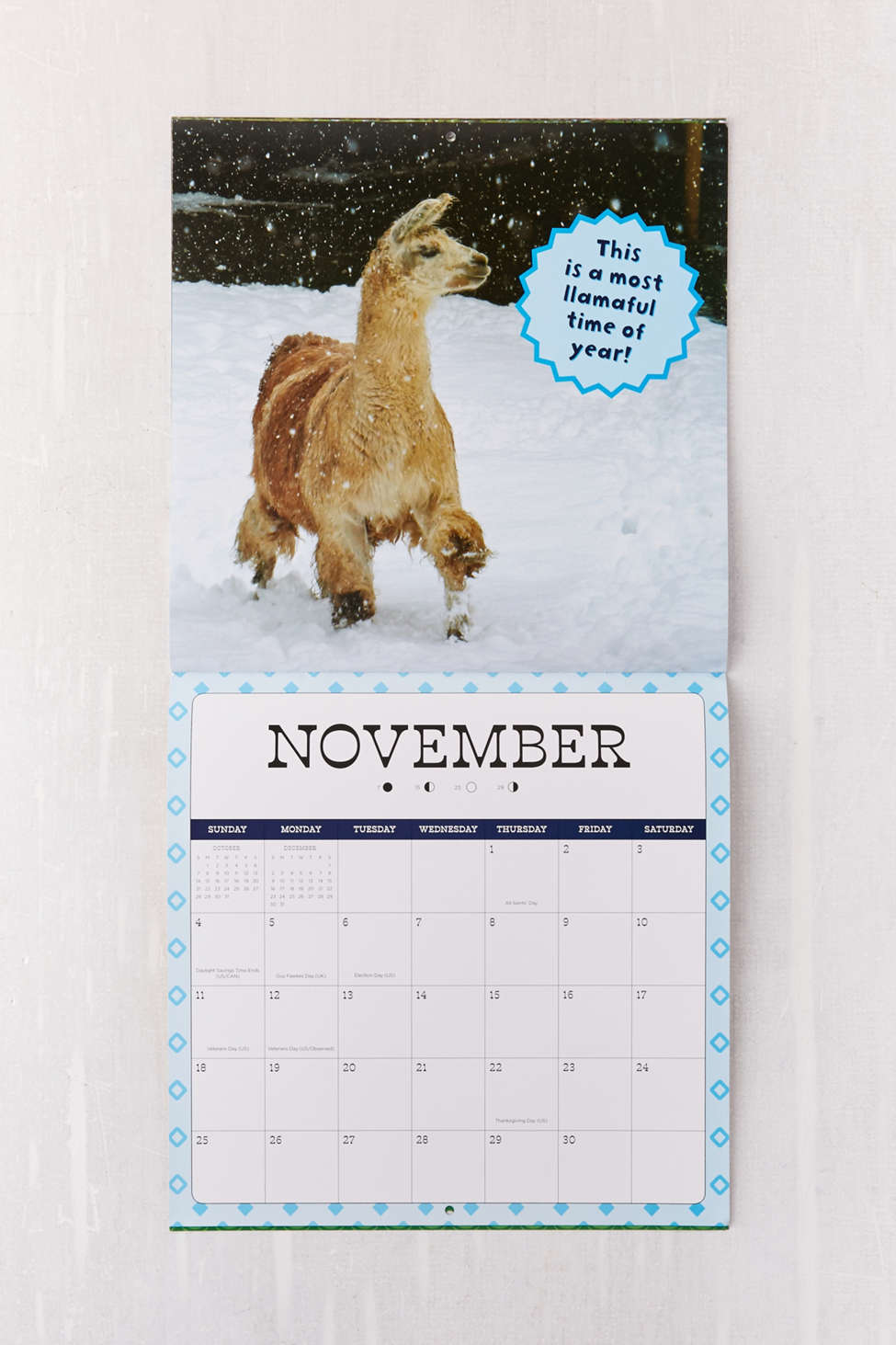 Llama Drama Month Wall Calendar  Urban Outfitters
