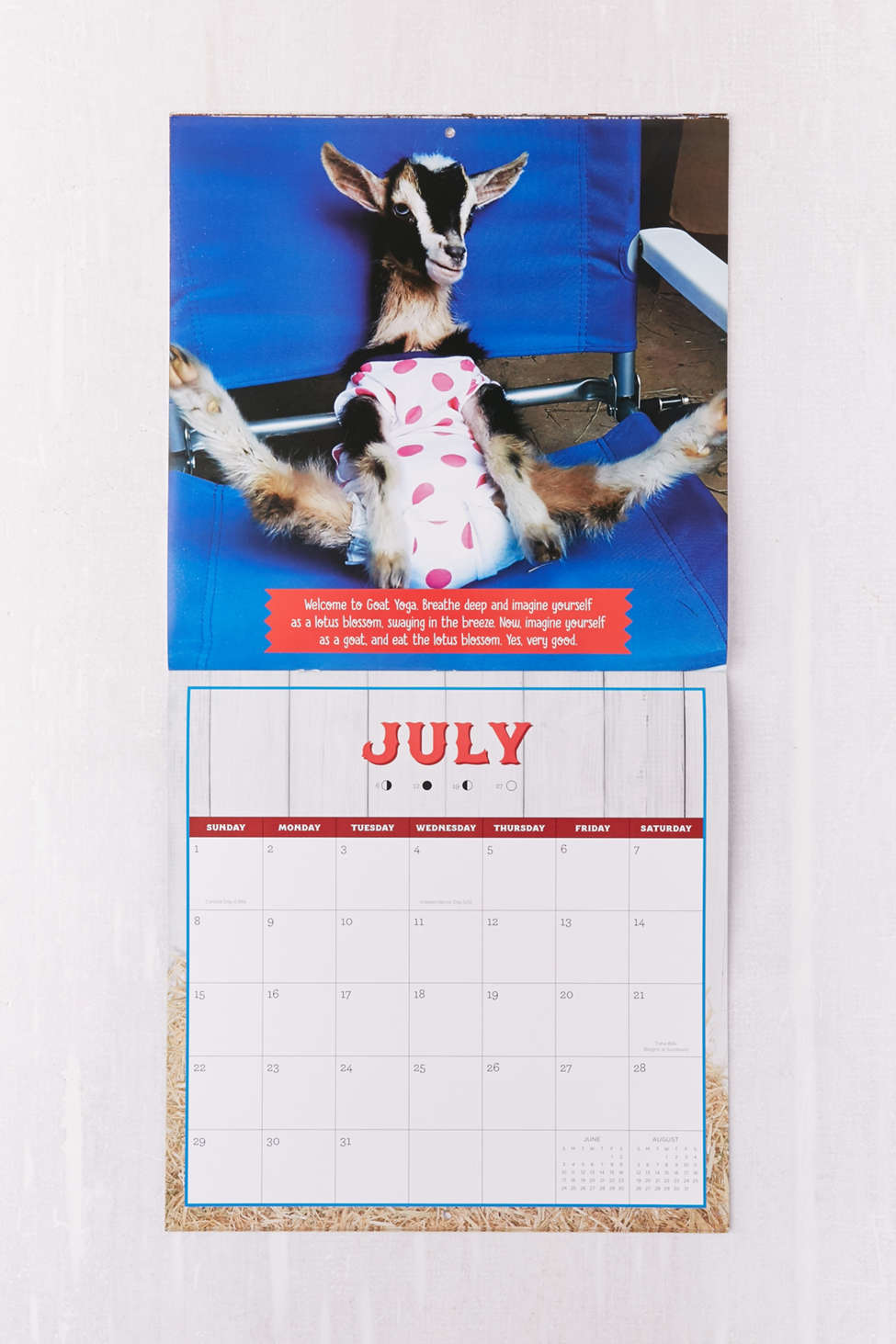 Goats Of Anarchy Month Wall Calendar  Urban Outfitters