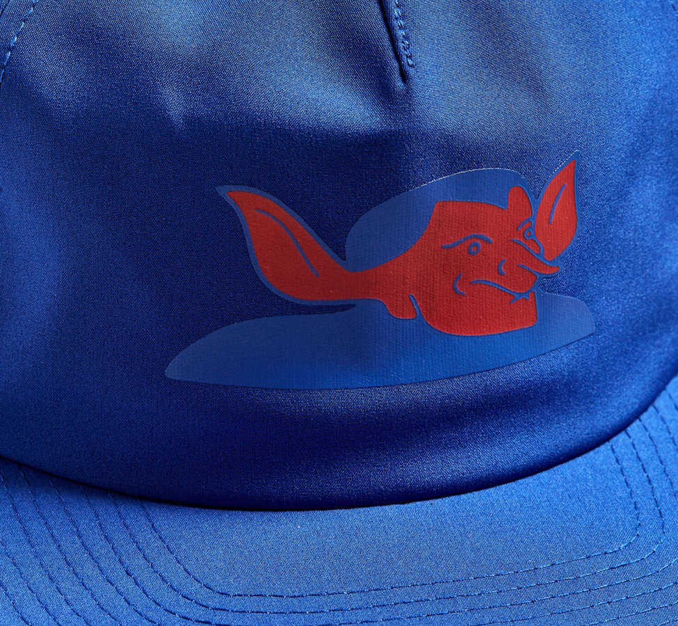 Slide View: 3: Hall Of Fame Flame On Snapback Hat