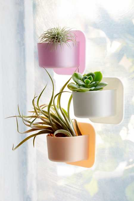 Tooletries Silicone Succulent Wall Planter