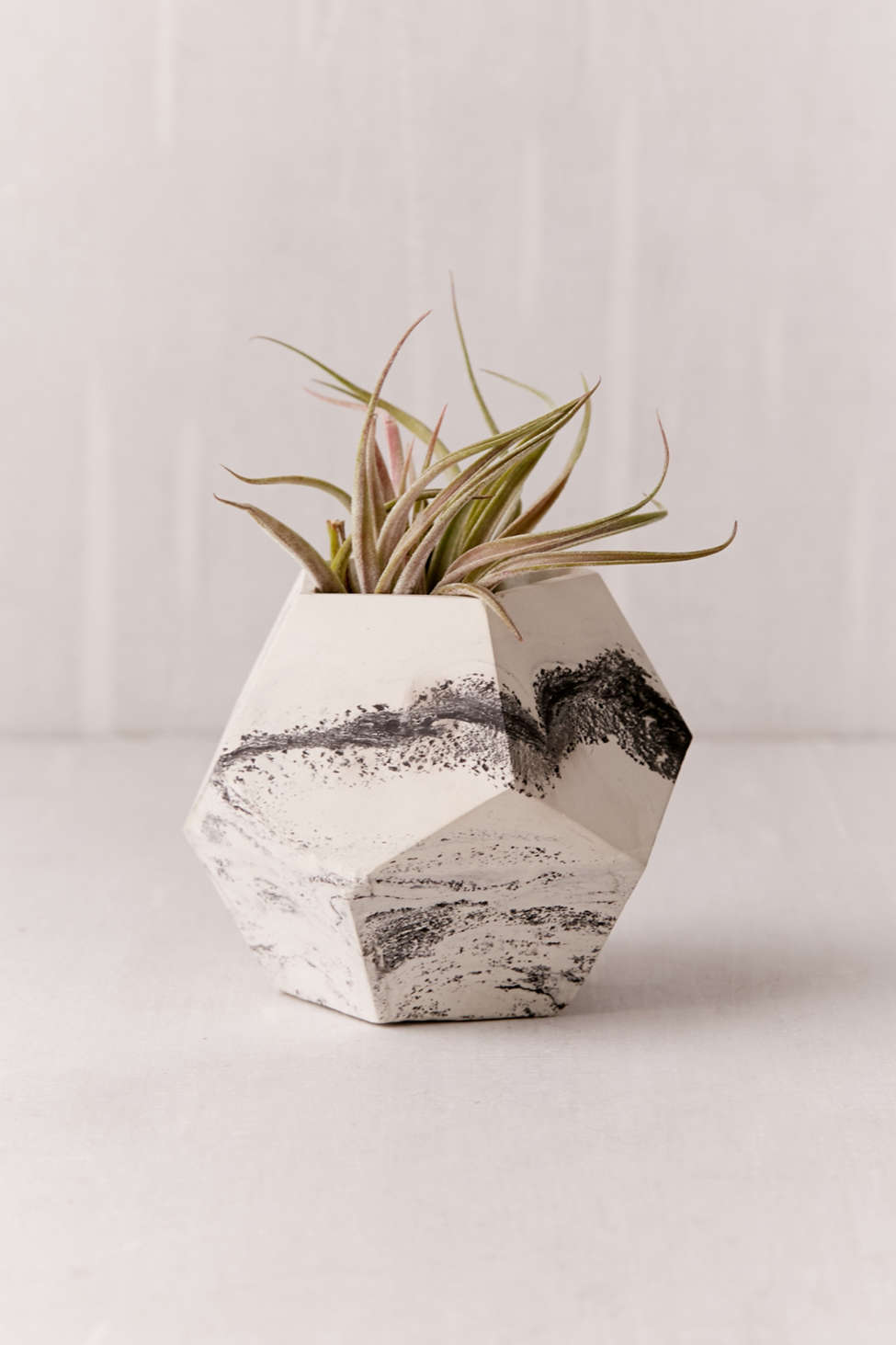 Slide View: 1: Concrete Geometric X UO Dodecahedron Marble Planter