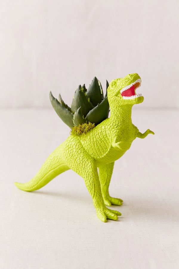 Slide View 1 Upcycled T Rex Faux Succulent Planter