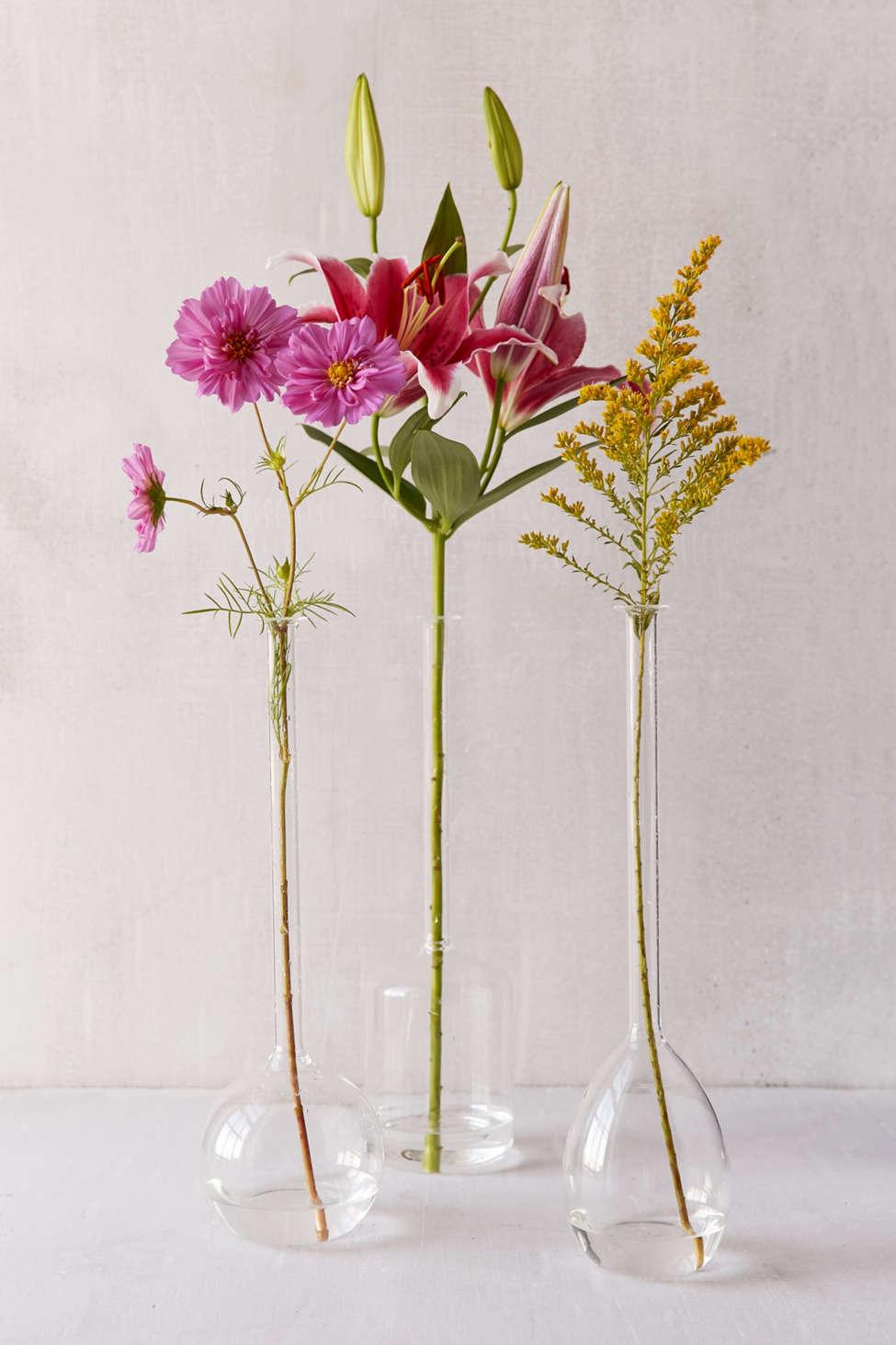 Slide View: 1: Serafina Assorted Vase Trio - Set of 3