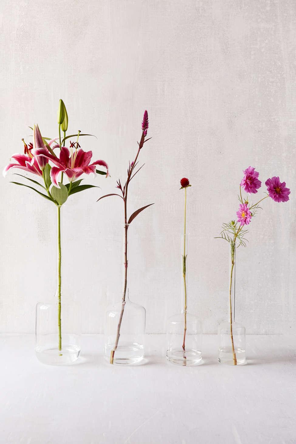 Slide View: 1: Tina Assorted Jug Vases - Set Of 4