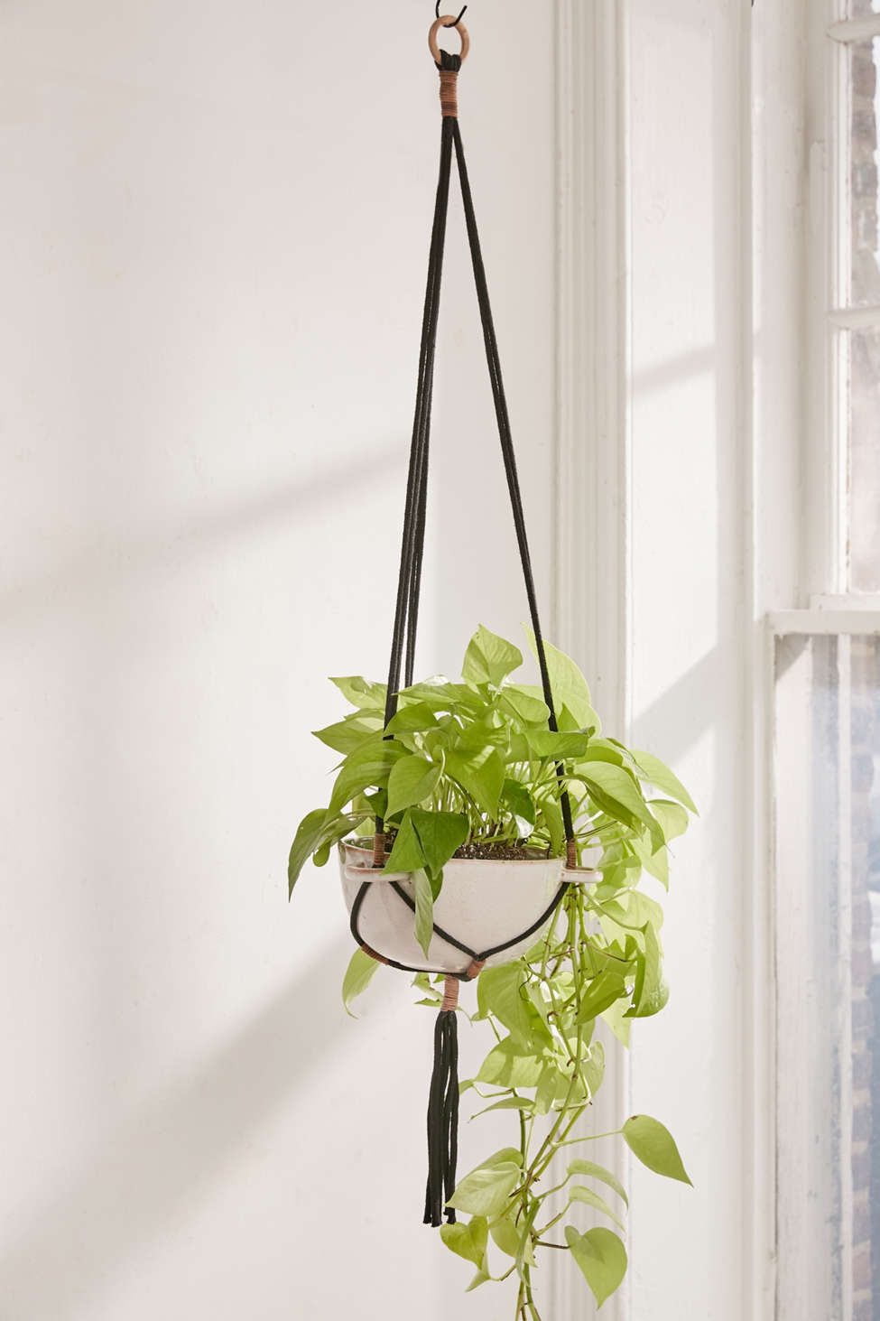 Slide View: 1: Edda Hanging Planter