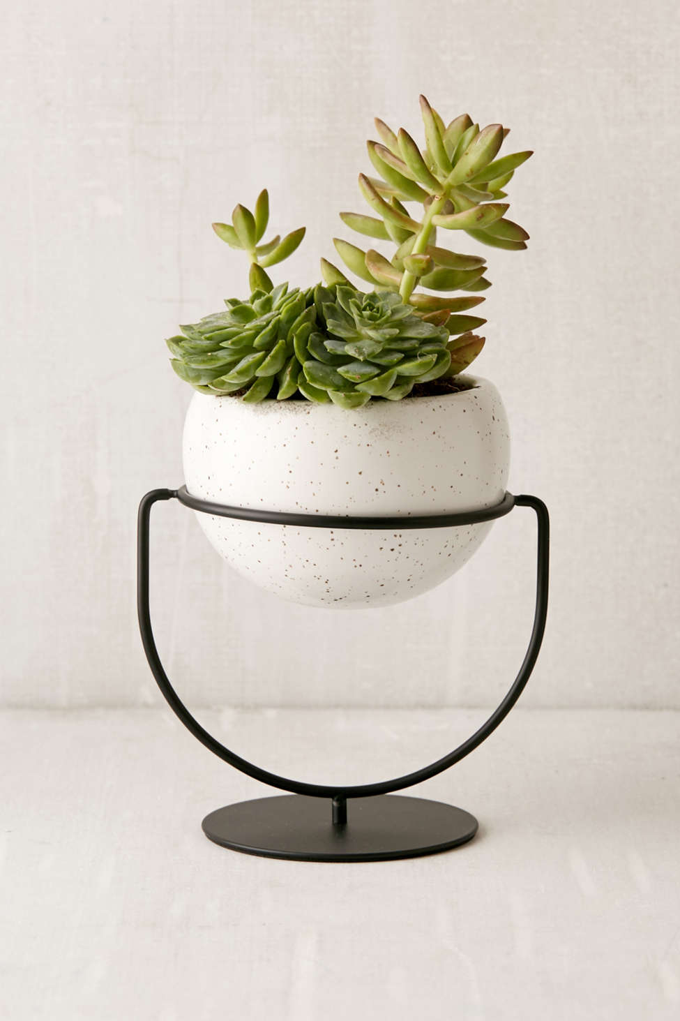 Slide View: 1: Mila Convertible Planter