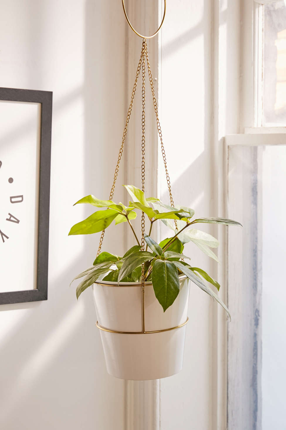 Slide View: 1: Meredith Metal Planter + Hanger Set