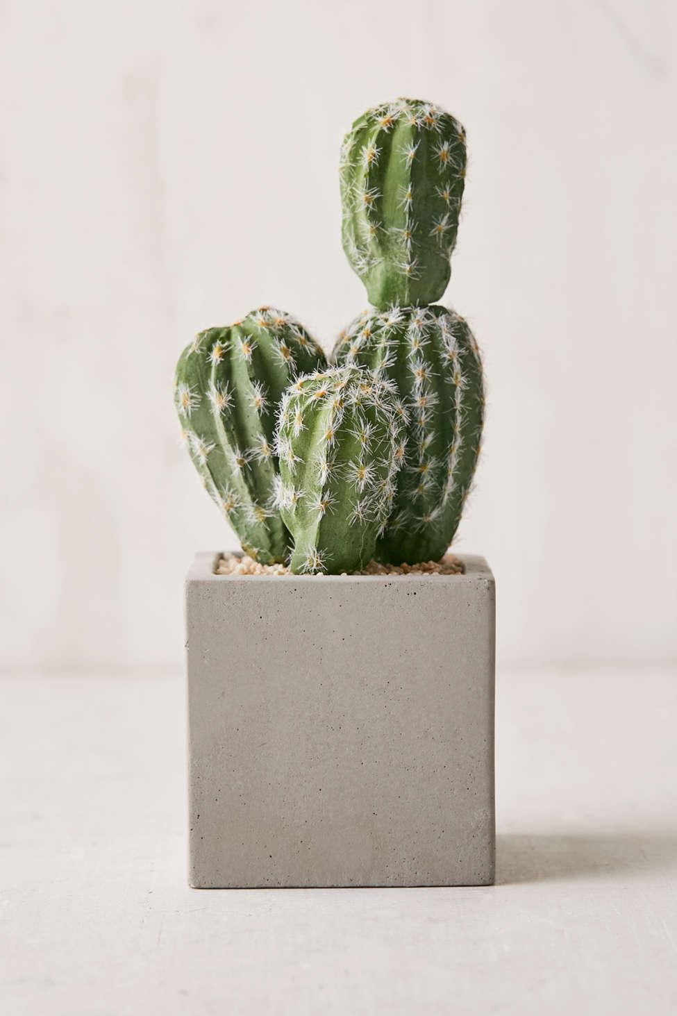 """Slide View: 1: 6"""" Concrete Potted Faux Cactus"""