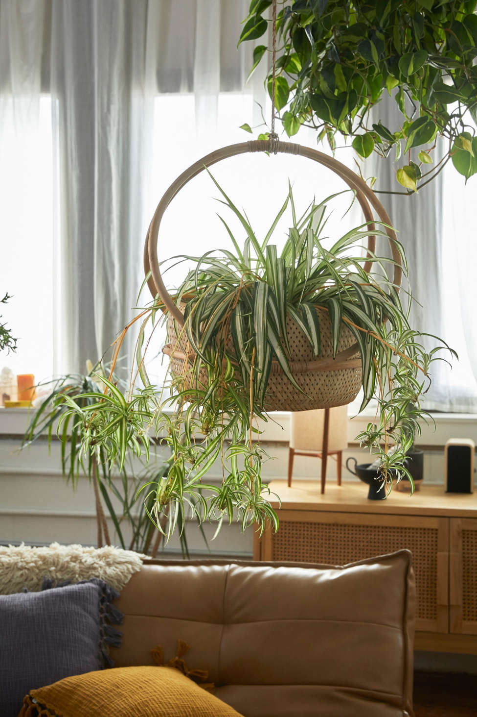 Slide View: 1: Margot Hanging Planter