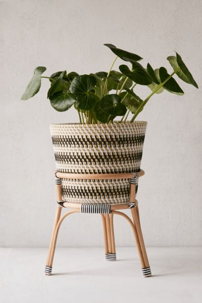 R Bistro 12 Rattan Planter Stand By Urban Outers