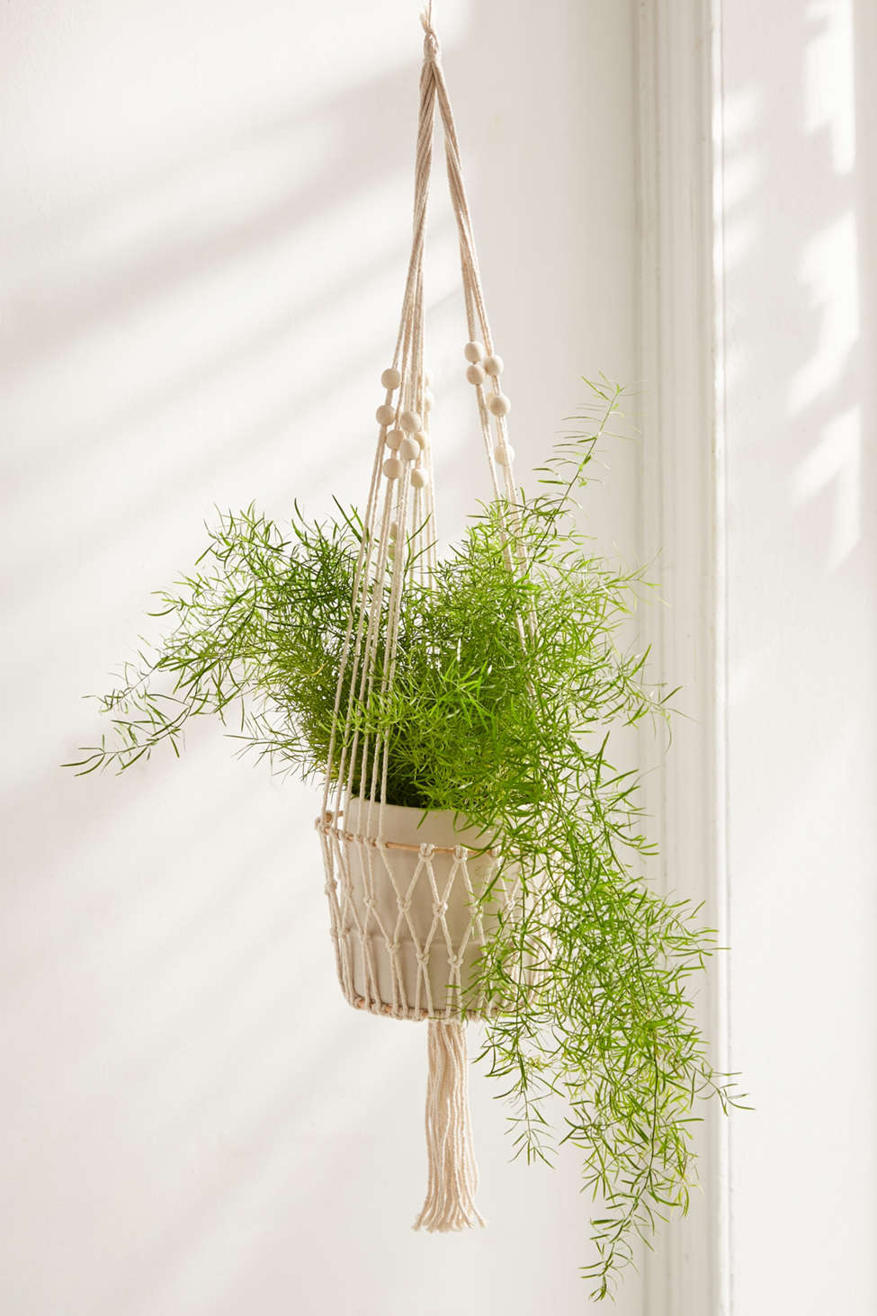 Slide View: 1: Ira Hanging Planter