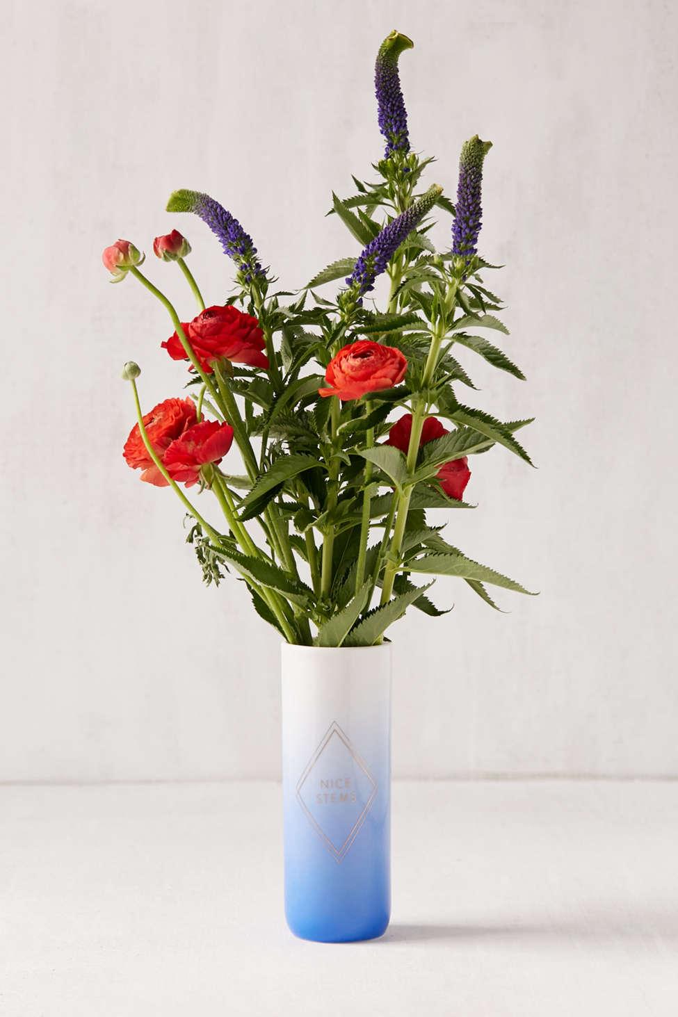 Slide View: 1: Fringe Studio Nice Stems Ceramic Vase