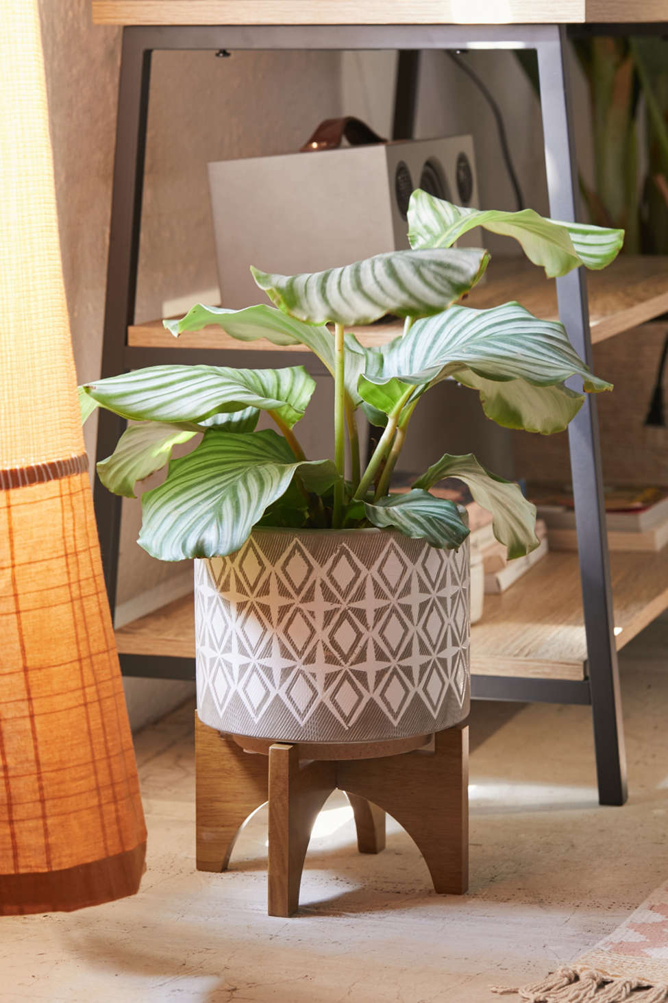 "Slide View: 1: Charlee 8"" Planter + Stand"