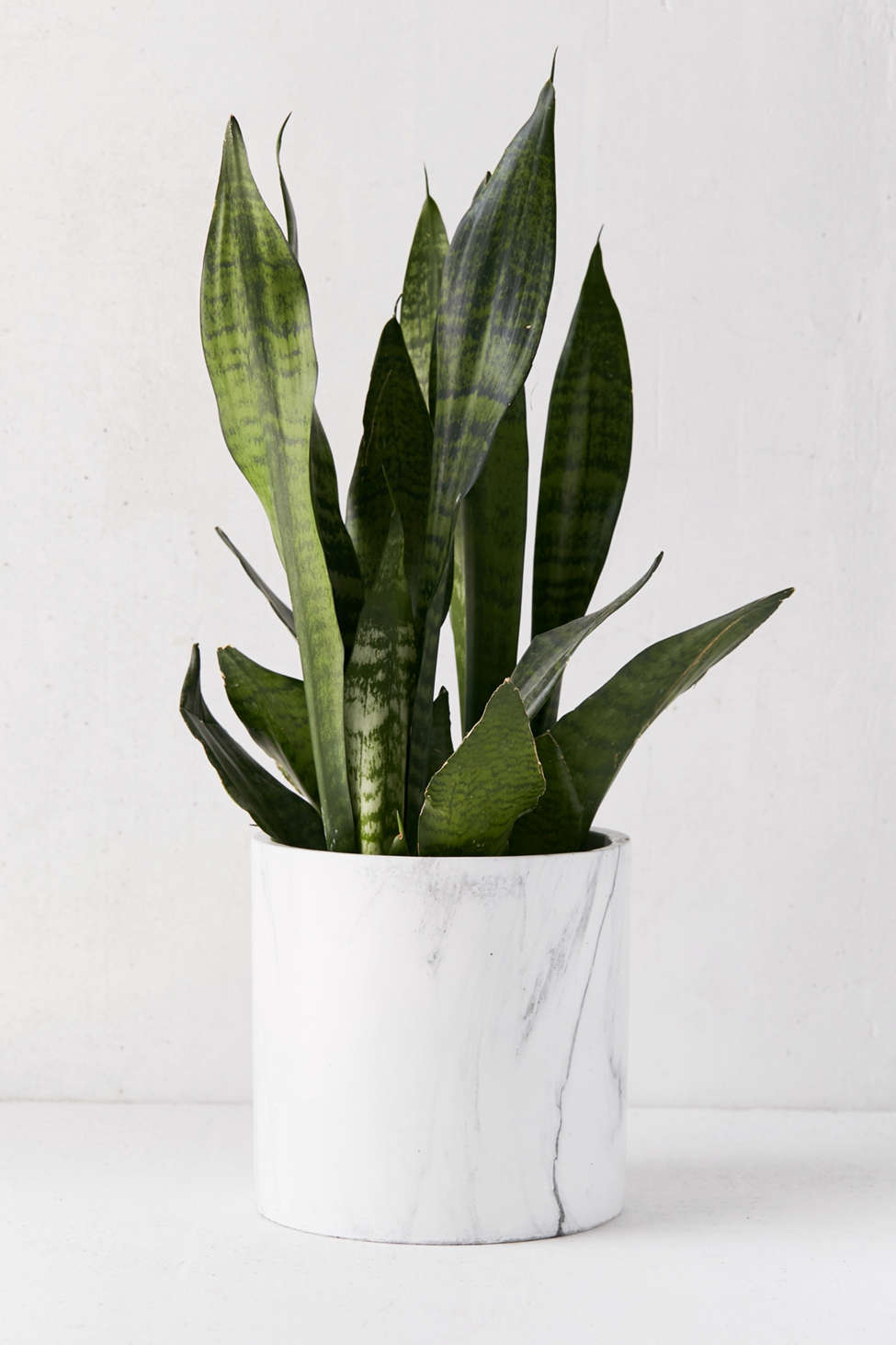 """Slide View: 1: Marble 8"""" Planter"""