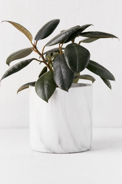 """Marble 6"""" Planter by Urban Outfitters"""