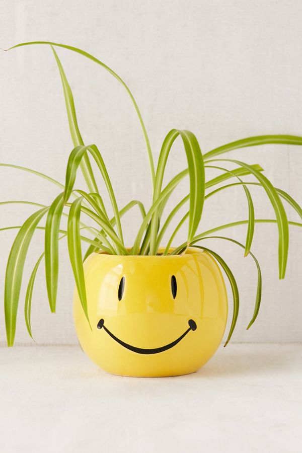 Smiley Face Planter Urban Outfitters