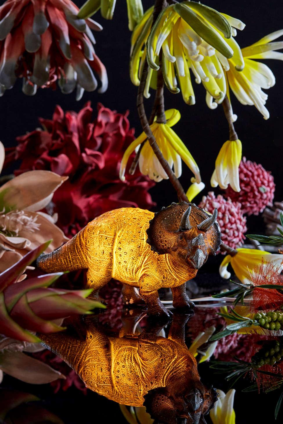 Slide View: 1: Triceratops Light