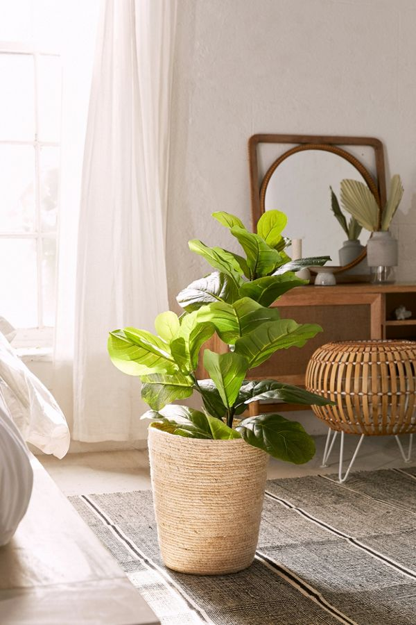 Slide View: 2: Fiddle Leaf Potted Faux Plant