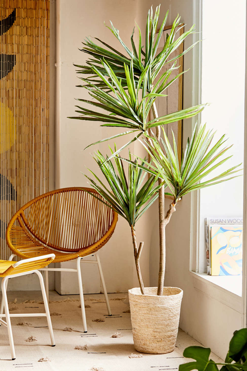 Slide View: 1: Yucca 6â?? Potted Faux Tree