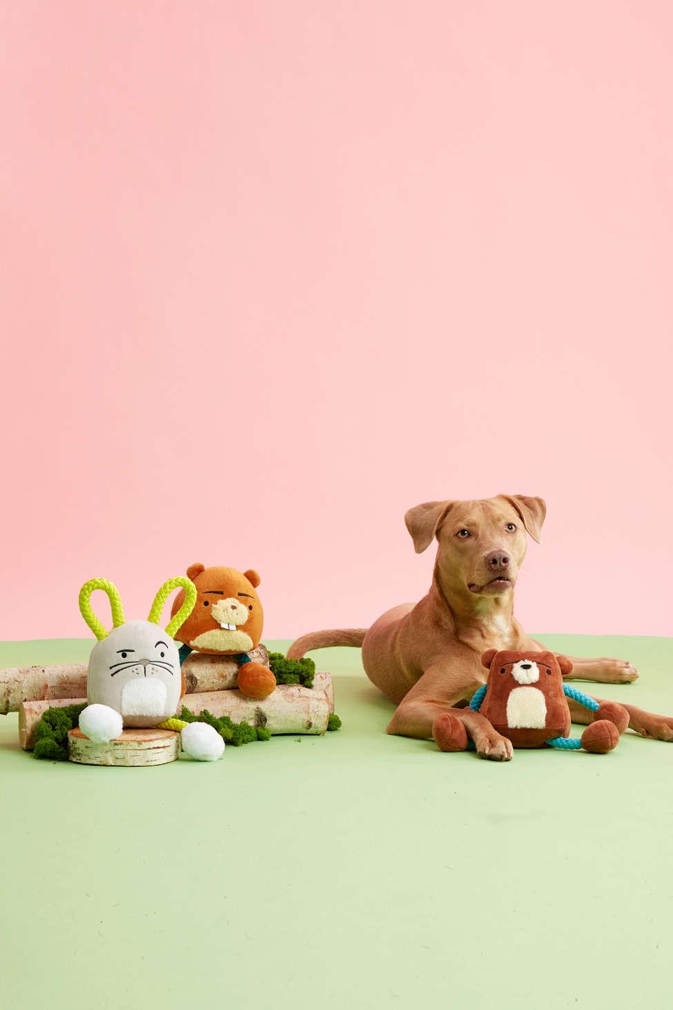 Slide View: 2: BARK Woodland Tugimals Dog Toy Bundle