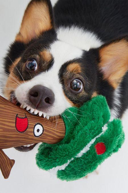 Bark Plunder The Tree Dog Toy